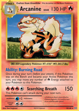 Arcanine from Evolutions
